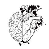 Übergeben Sie gezogener Linie Kunst menschliches Gehirn und Herz halfs Schmutzskizzentinten-Tätowierungsdesign auf weißer Hinterg Lizenzfreie Stockbilder