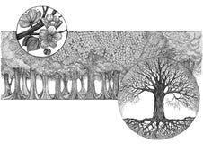 Übergeben Sie Zeichnung, grafisches Bild auf dem Themabaumblühen Stockbilder