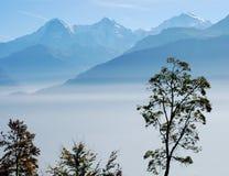 BergEiger Jungfrau Nebel die Schweiz Stockfotografie