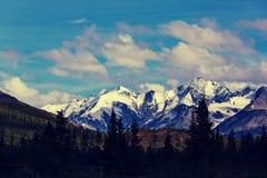 Bergen in Alaska Royalty-vrije Stock Afbeelding