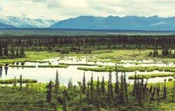 Bergen in Alaska Stock Afbeelding
