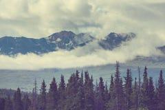 Bergen in Alaska Royalty-vrije Stock Foto