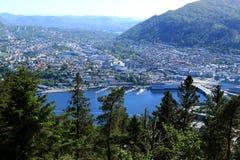 Bergen attraverso gli alberi Fotografie Stock Libere da Diritti
