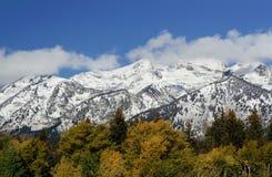 Bergen bij het Nationale Park van Grand Teton, Wyoming, U Royalty-vrije Stock Afbeeldingen