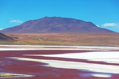 Bergen in Bolivië Stock Afbeeldingen