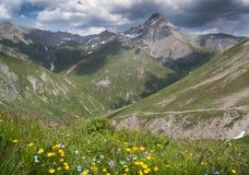 Bergen in de Alpen met bloemen en wolken bij Fimba-pas royalty-vrije stock foto's