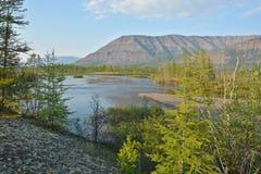 Bergen in de buurt van Norilsk-meren Stock Afbeeldingen