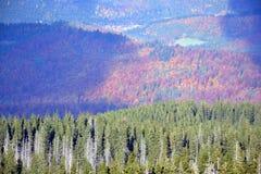 Bergen in de herfst Royalty-vrije Stock Afbeeldingen