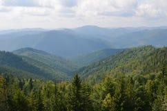 Bergen in de nevel, bomen in de voorgrond, bewolkte hemel royalty-vrije stock afbeelding