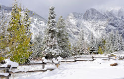 Bergen in de Winter Stock Afbeeldingen