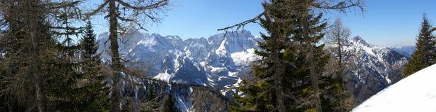Bergen in de winterpanorama Stock Afbeelding