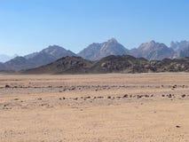 Bergen in de woestijn van Egypte stock afbeelding