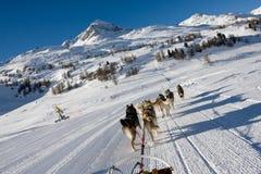 Bergen in de Zwitserse alpen Royalty-vrije Stock Foto