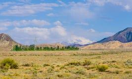 Bergen dichtbij het meer van Issyk- Kul in Kyrgystan tijdens zomer royalty-vrije stock foto's