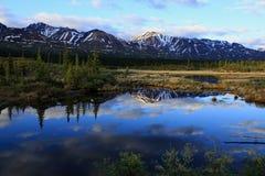 Bergen die langs de Denali-Weg nadenken stock foto's