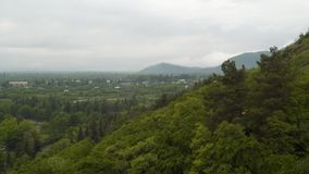 Bergen die met bomen in bewolkt weer worden behandeld stock video