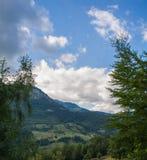 Bergen door bomen Royalty-vrije Stock Foto's