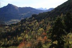 Bergen en bomen in de Pyreneeën Stock Foto