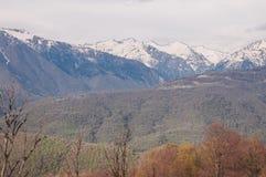 Bergen en bos in Sotchi Royalty-vrije Stock Afbeeldingen