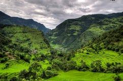Bergen en de Aanplantingen van de Rijst in Annapurna stock foto's