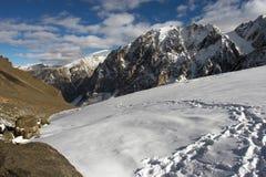 Bergen en gletsjer. Royalty-vrije Stock Foto's