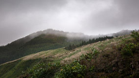 Bergen en gras in wolken en mist worden behandeld - de Azoren, Sao Migu die Stock Afbeeldingen