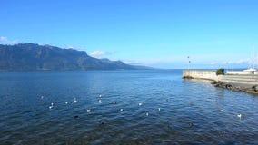 Bergen en het meer van Genève stock footage