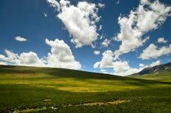 Bergen en heuvels Stock Afbeeldingen
