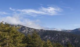 Bergen en wild bossenhoogtepunt van kleur royalty-vrije stock afbeeldingen