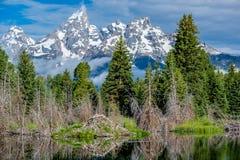 Bergen in het Nationale Park van Grand Teton met bezinning in Slangrivier Stock Afbeelding