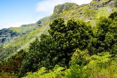 bergen i norden av ön av madeiran Royaltyfri Bild