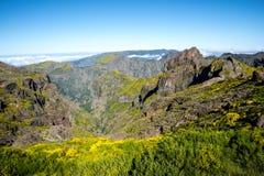bergen i norden av ön av madeiran Royaltyfria Foton
