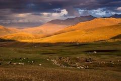 Bergen in Kazachstan Stock Fotografie