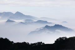 Bergen met bomen en mist in zwart-wit kleur stock fotografie