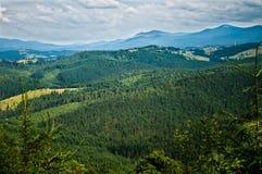 Bergen met bos worden behandeld dat Stock Afbeelding