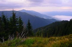 Bergen mistige vallei Stock Fotografie
