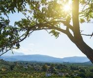 Bergen mooi inspirational landschap in de zomerdag de zon glanst door de takken van een boom in de voorgrond stock afbeelding