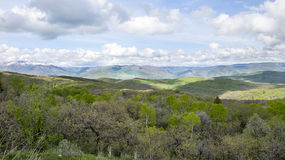 Bergen op achtergrond met de bergen van Utah met rollende groene heuvels Stock Afbeelding