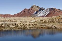 Bergen in Peru royalty-vrije stock afbeeldingen