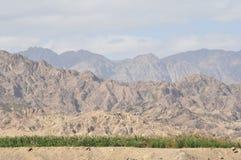 Bergen in Sinai, Egypte Stock Afbeeldingen