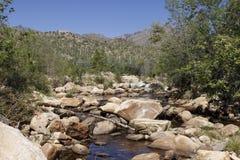 Bergen in Tucson, Arizona stock afbeeldingen
