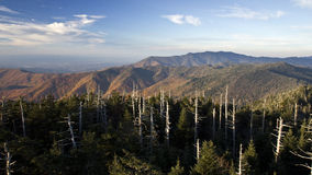 Bergen van de Koepel van Clingmans de Grote Rokerige Stock Afbeelding