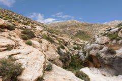 Bergen van de Woestijn van canionnegev in Israël Stock Afbeeldingen