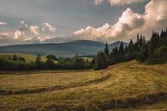 Bergen van Lage Tatras in Slowakije, aardige aard royalty-vrije stock afbeelding