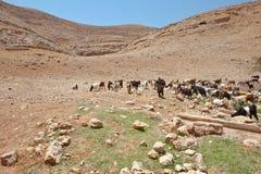 Bergen van Samaria stock afbeeldingen