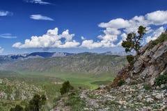 Bergen van zuidelijk Kyrgyzstan Stock Afbeelding