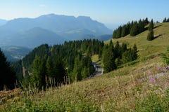 Bergen, weide, bomen en weg in Alpen in Duitsland Stock Foto's