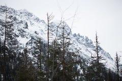 Bergen - Zakopane in de winter Royalty-vrije Stock Afbeeldingen