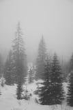 Bergen - Zakopane in de winter Stock Afbeeldingen