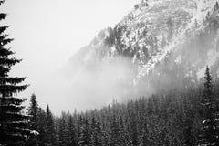 Bergen - Zakopane in de winter Stock Foto